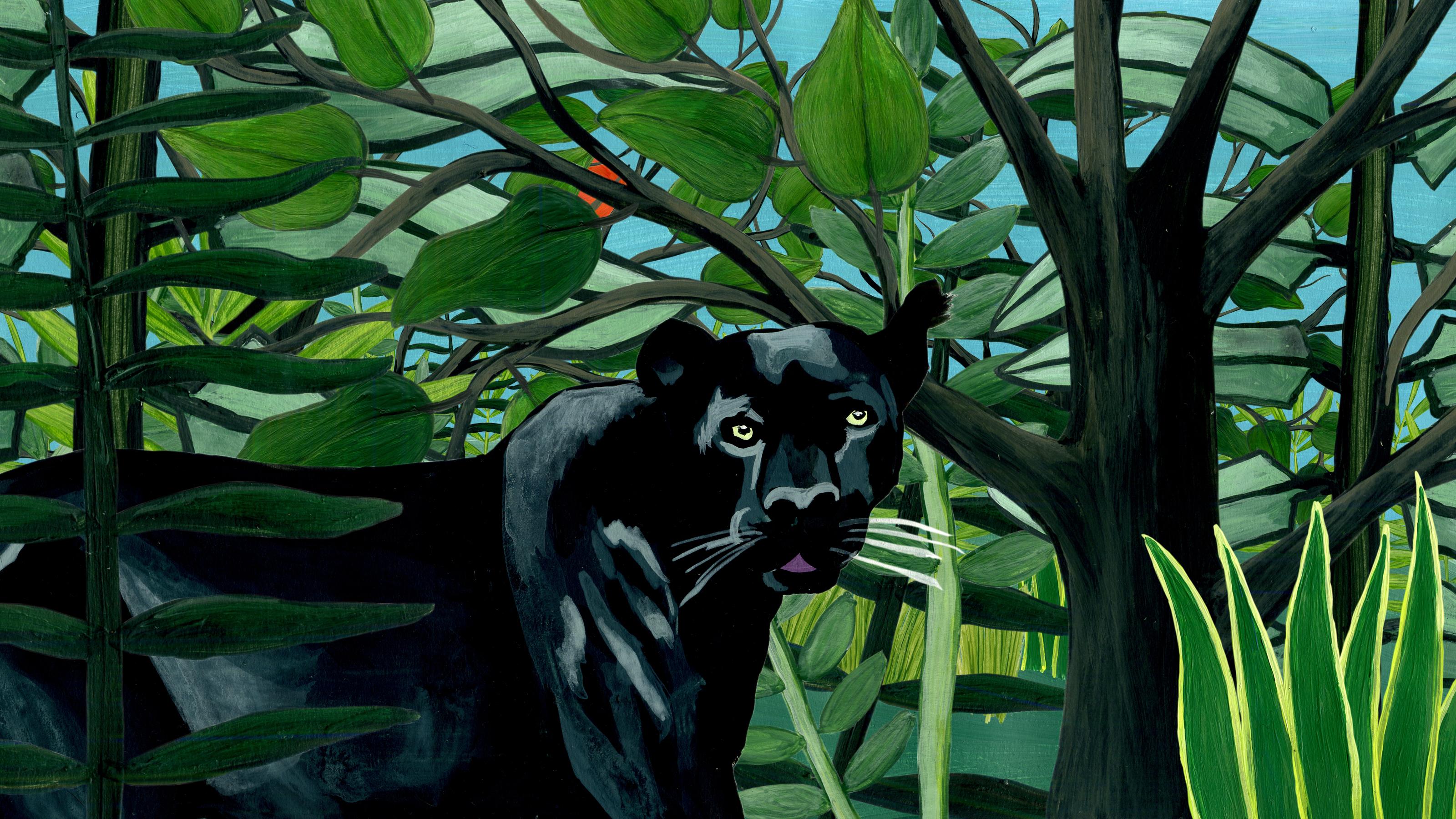 Der Panther | Tschitrakarna, das vornehme Kamel